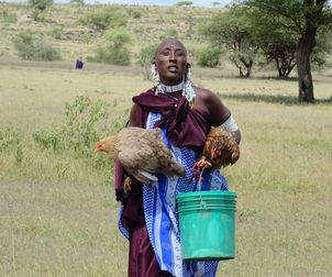 Masai woman with hens